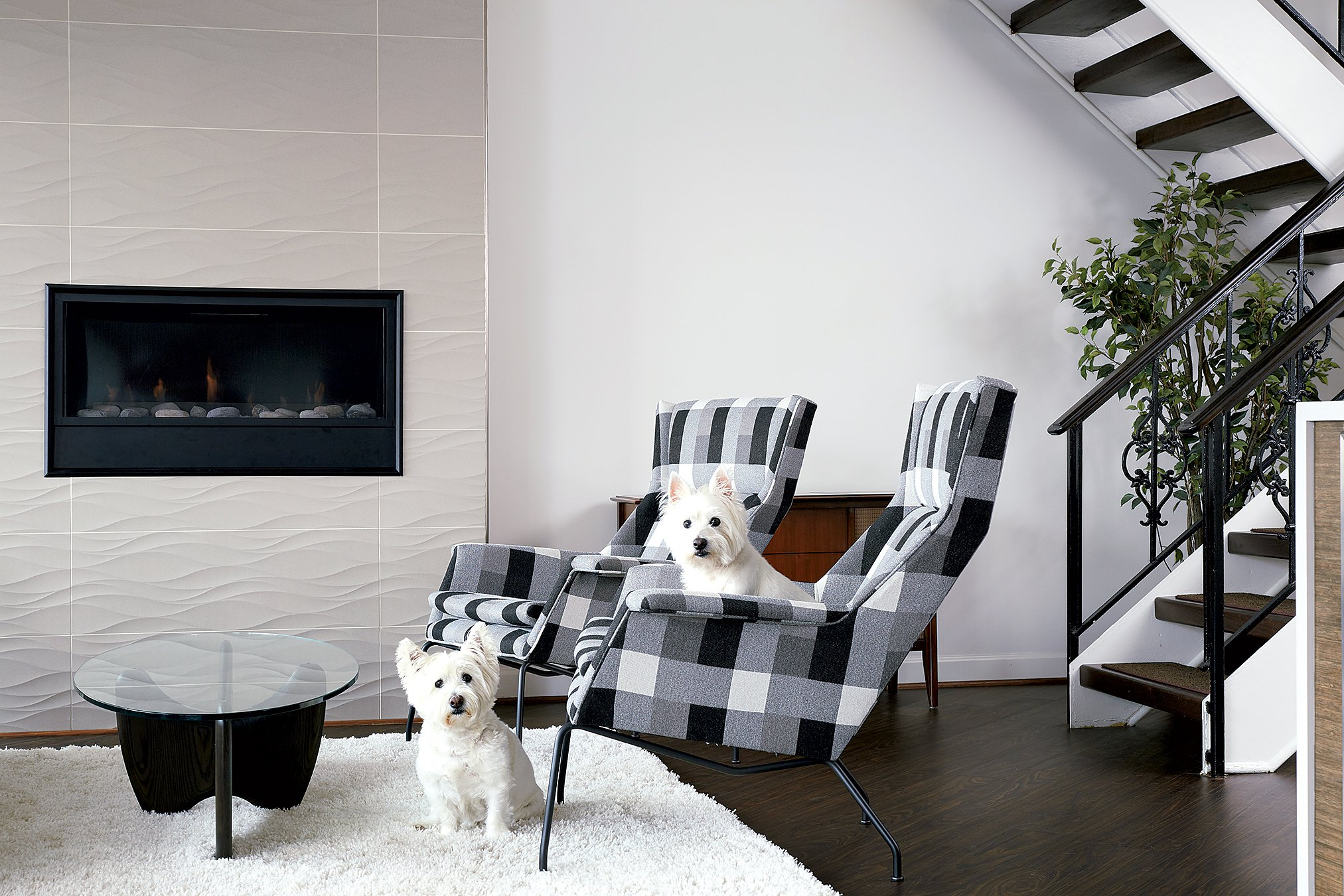 Coretec vinyl flooring—which looks like black walnut—can stand up to wear from their two West Highland terriers. Photograph by Stacy Zarin Goldberg.