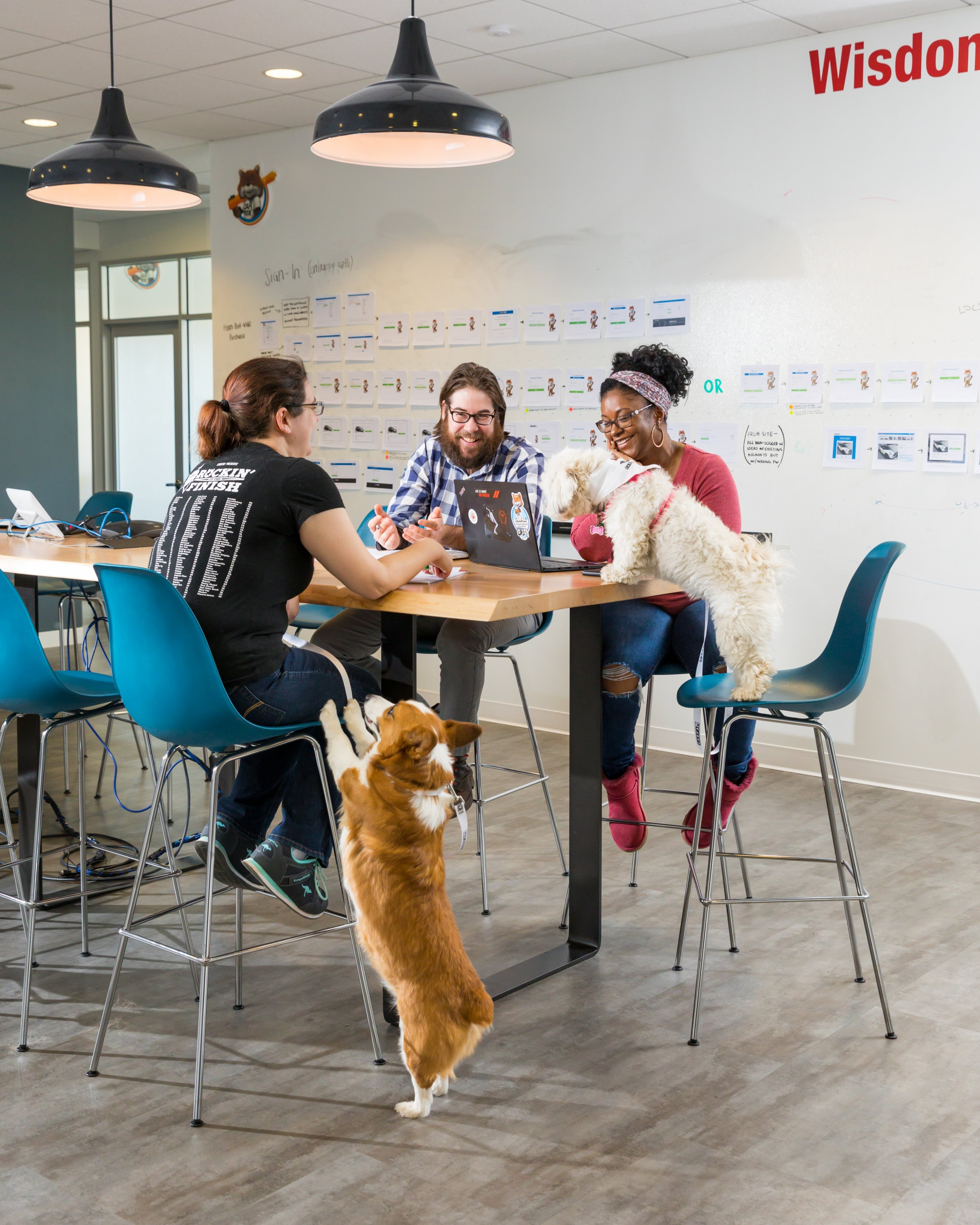 Carfax's work-hard/play-hard culture includes allowing dogs in the office. Photograph by Dan Chung.