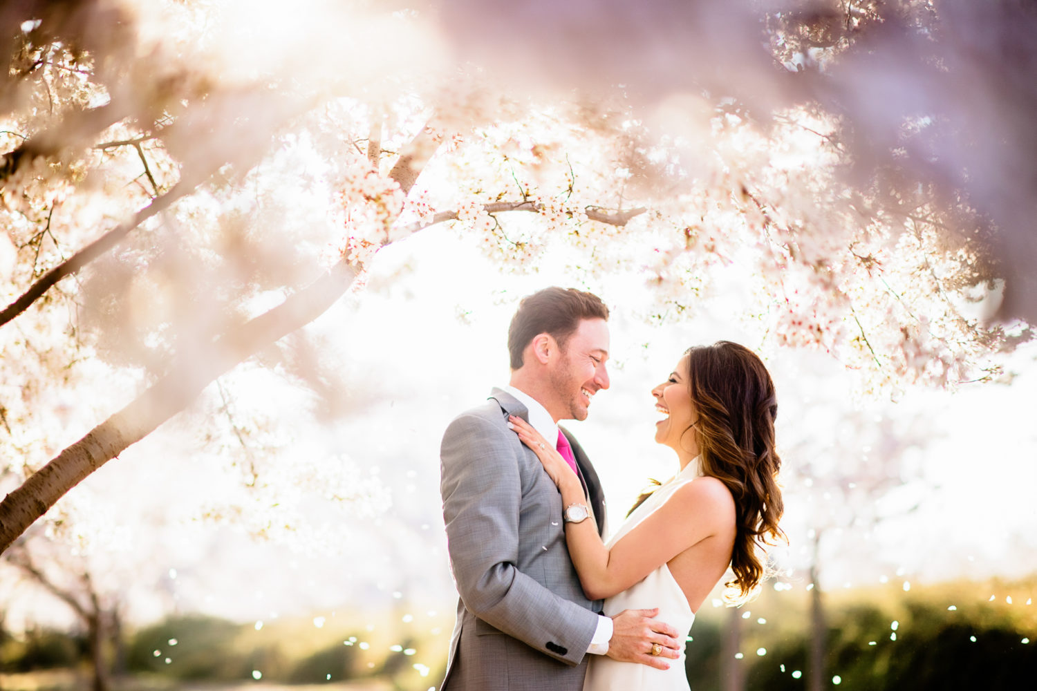 perfect cherry blossom engagement photo