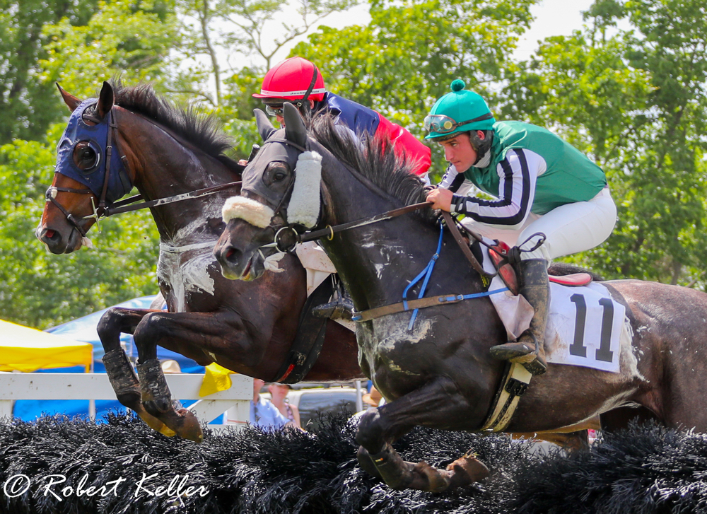Potomac Hunt Races