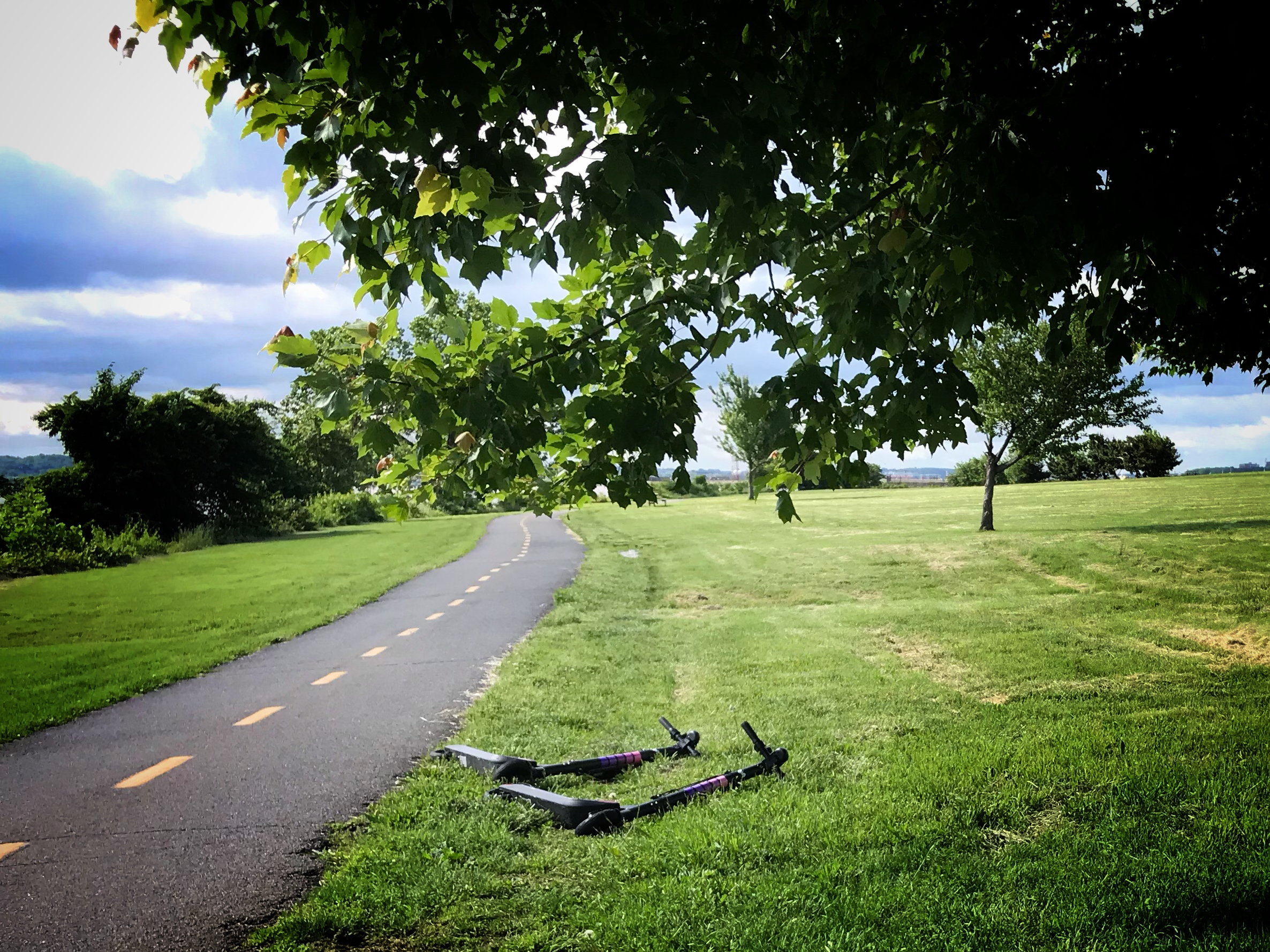 People Are Leaving Scooters All Over a National Park