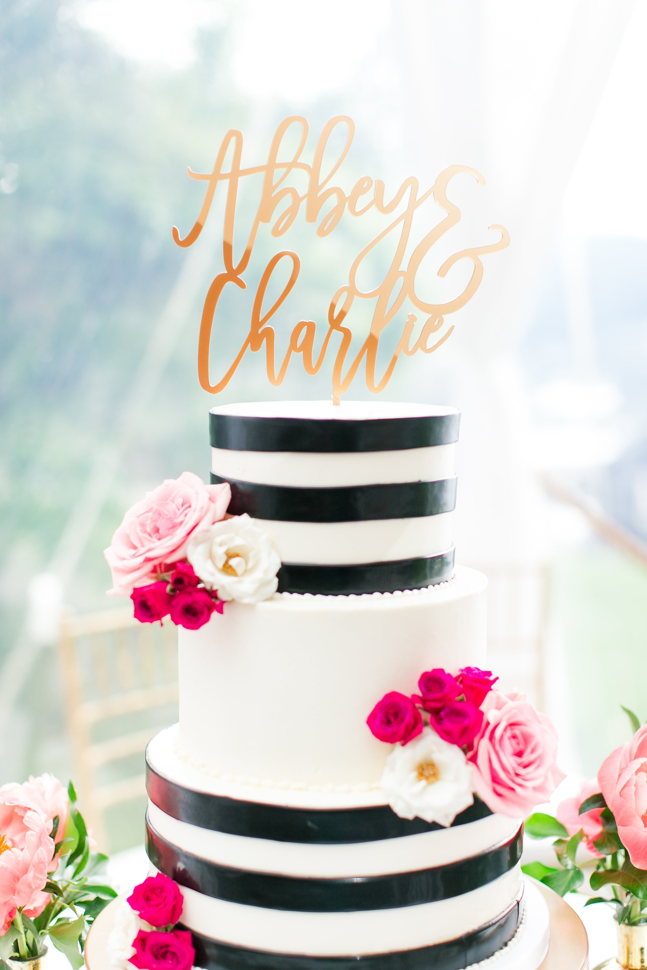 View More: https://kristimckeagphotography.pass.us/abbey-charlie-married