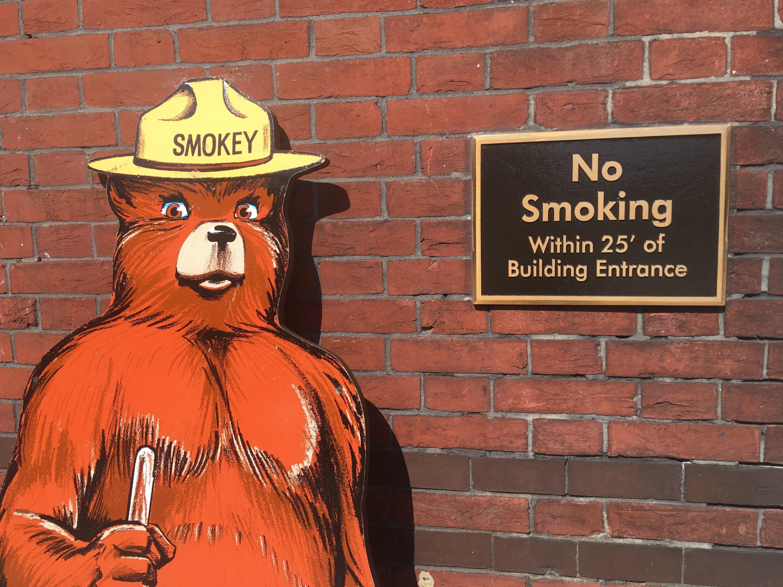 There's an Exhibit Dedicated to Smokey Bear in Southwest DC   Washingtonian (DC)