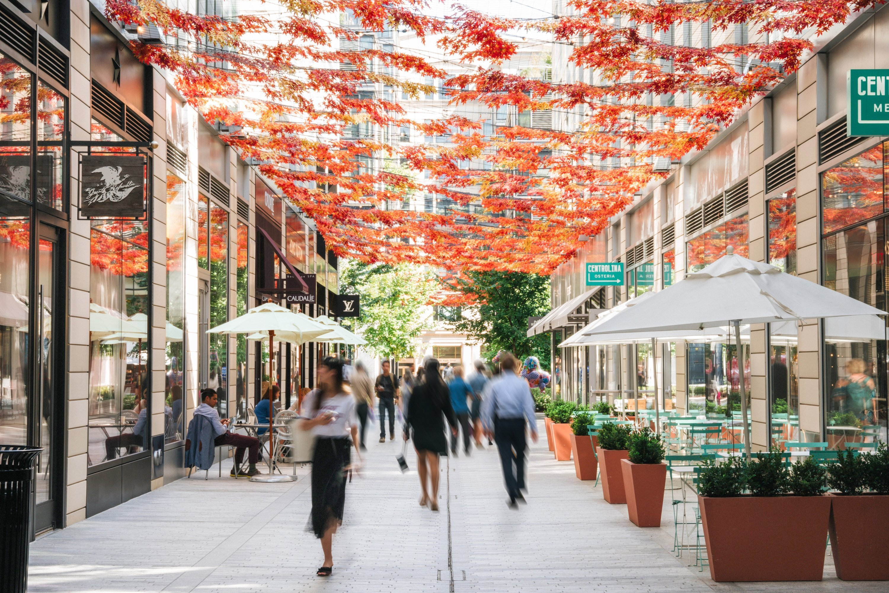 Five Reasons Why Visiting CityCenterDC Should Be at the Top of Your Fall To-Do List