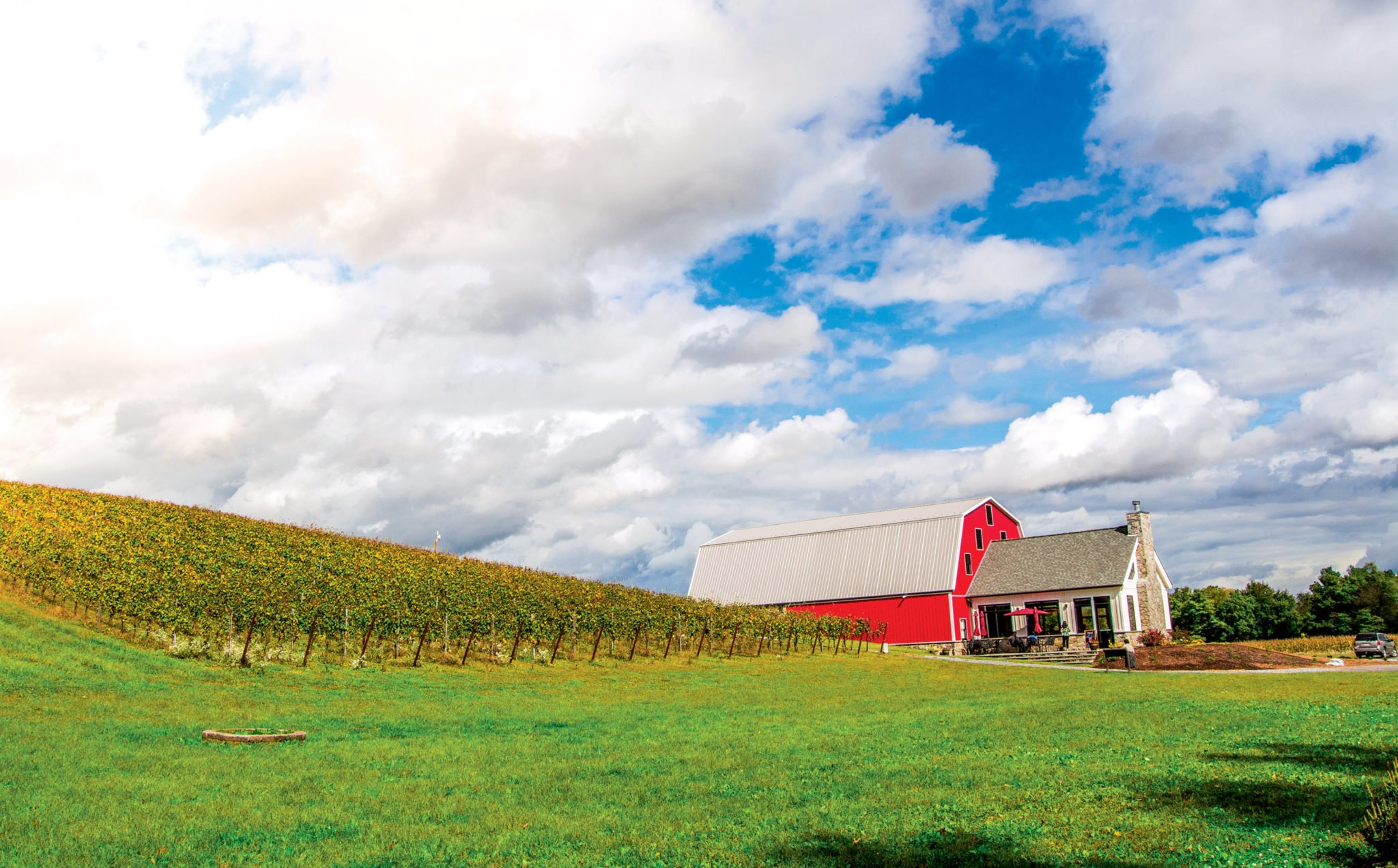 wineries near dc
