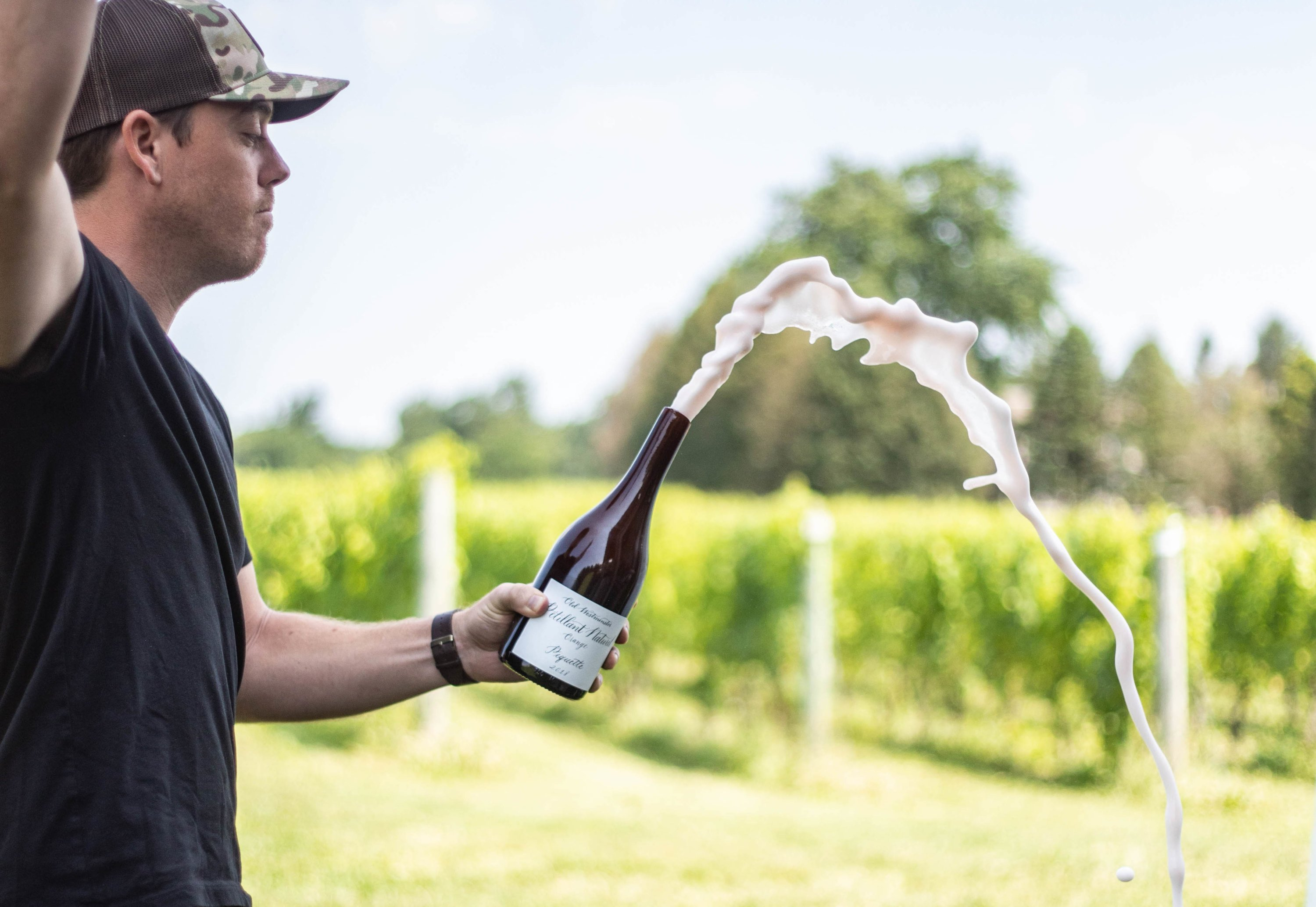 Is Low Alcohol, Sustainable Piquette the Next Big Thing in Wine?