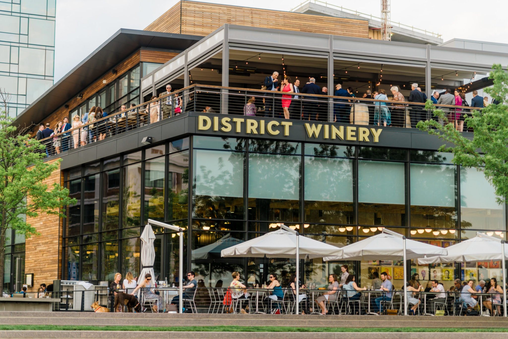 District Winery