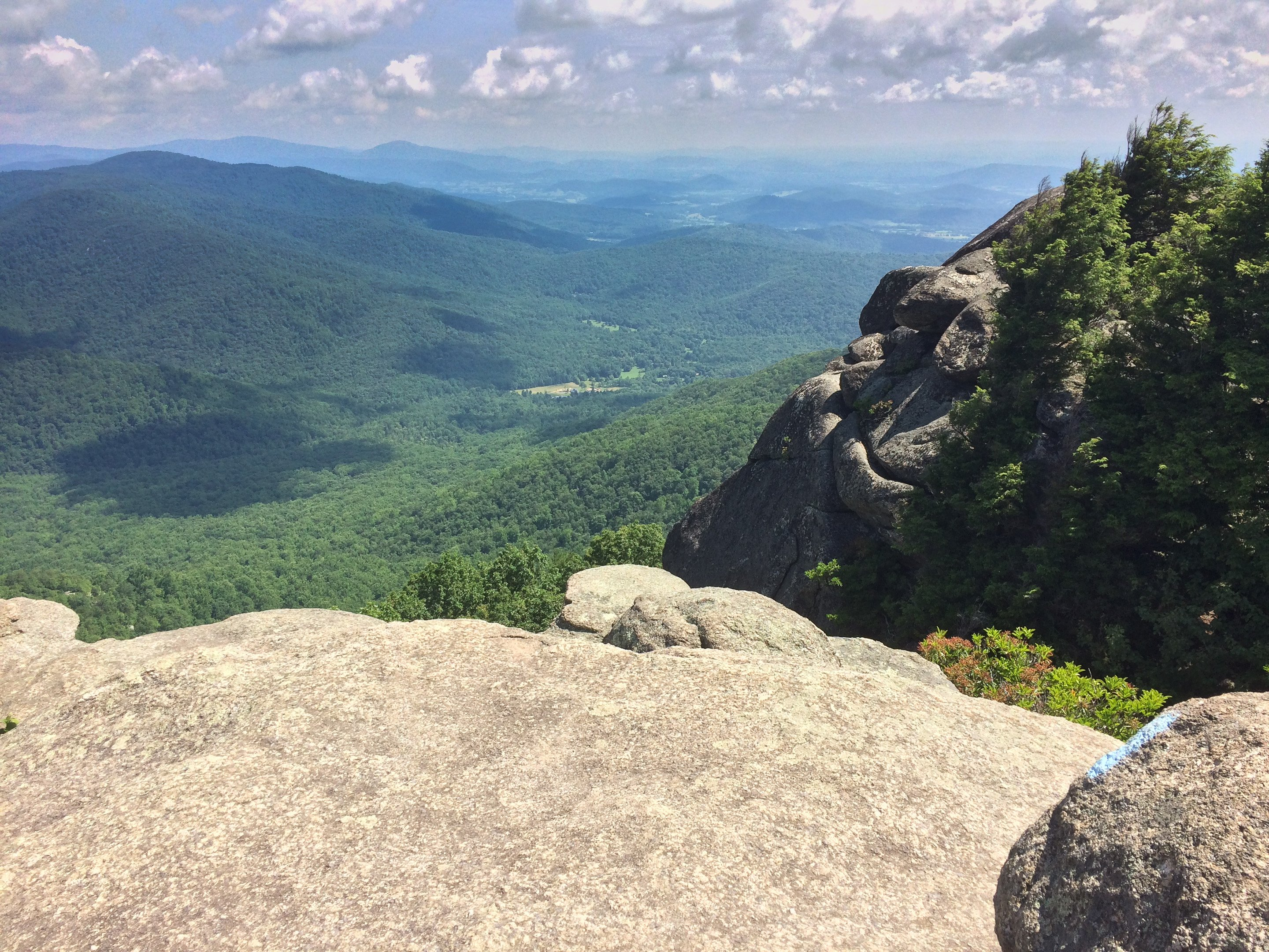 The view from Old Rag Mountain. Photo by Flickr user Larry Borreson.