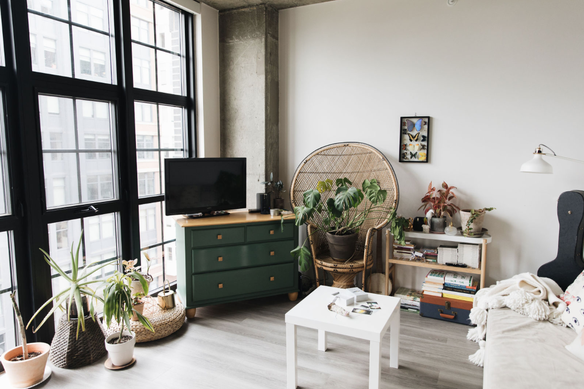 Look Inside My Home: This NoMa Apartment Is Filled With Crystals, Plants, and Floor-to-Ceiling Windows