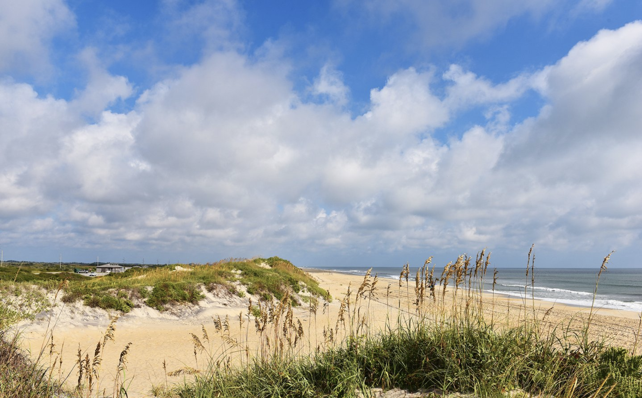 Updated Summer Beach Plans In The Mid Atlantic Here S What To Know About Covid And Your Vacation Washingtonian Dc