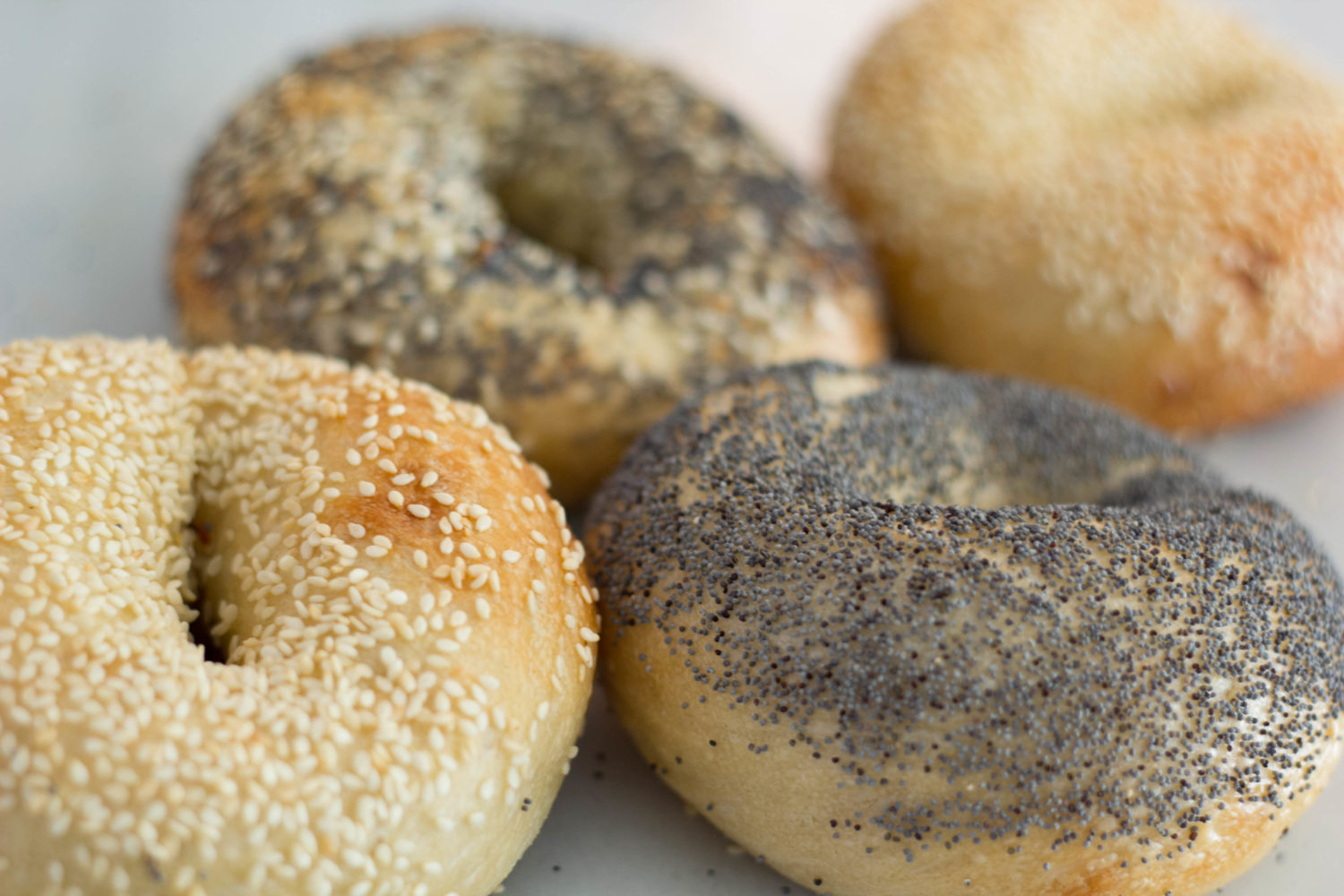 Sesame and poppy seed bagels are a cross between Montreal bagels and New Jersey-style bagels. Photo by Vanessa Mack.