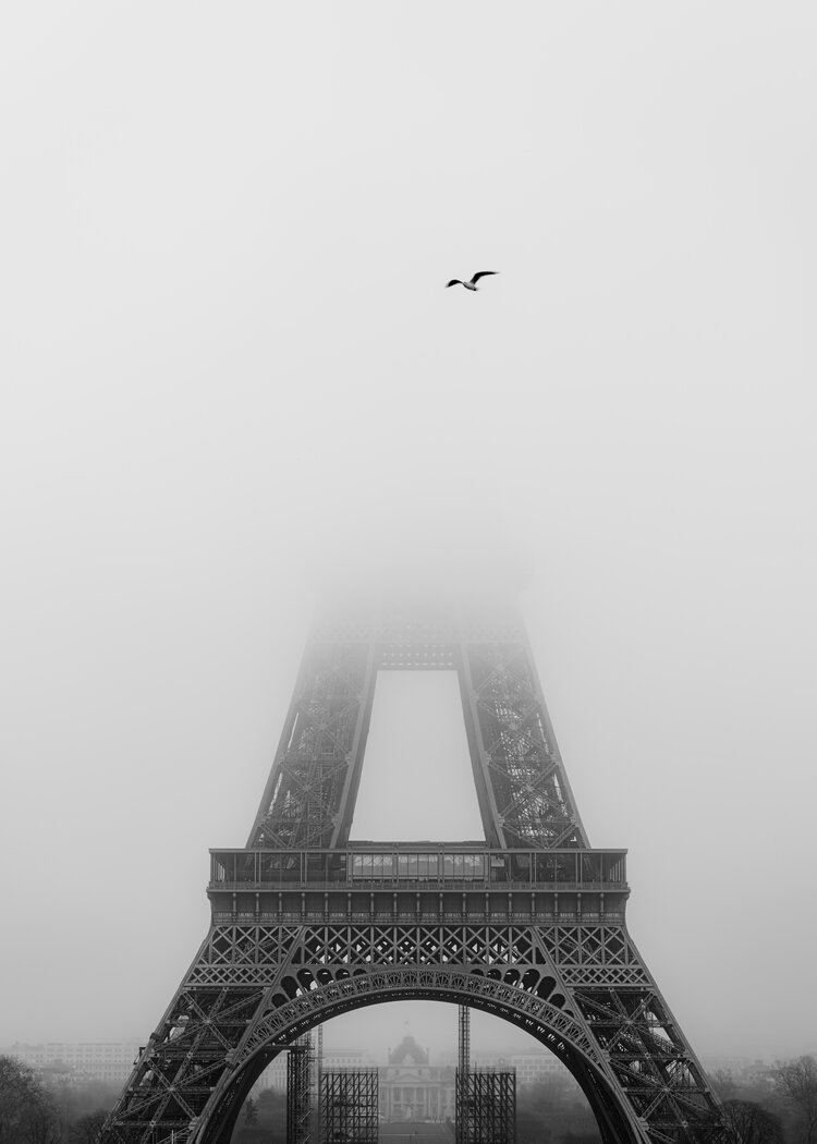 Photo by Julian Thomas