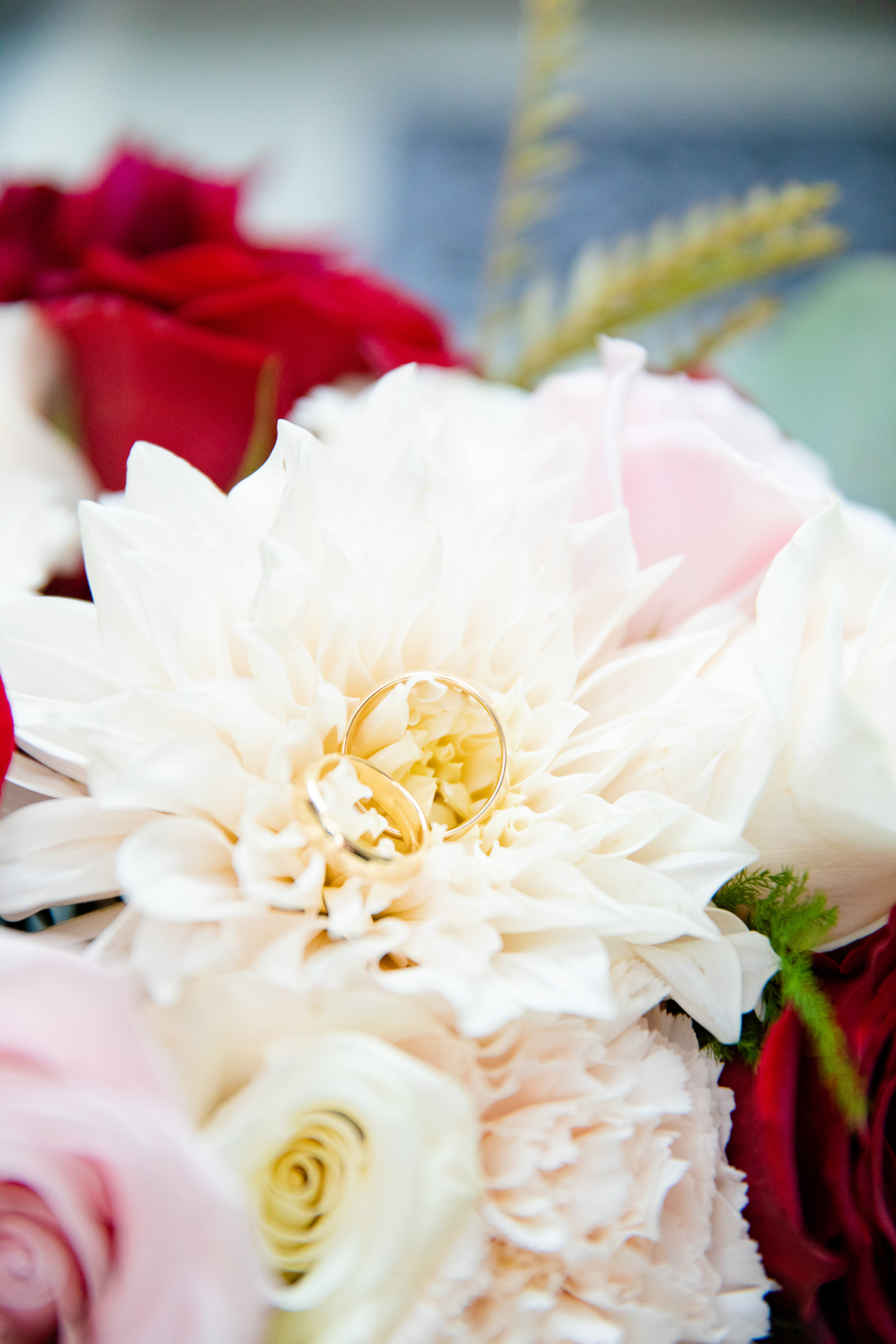 StefanieKamermanPhotography-MelanieandBenjamin-Wedding-Bethesda,MD-2019-10-12-71