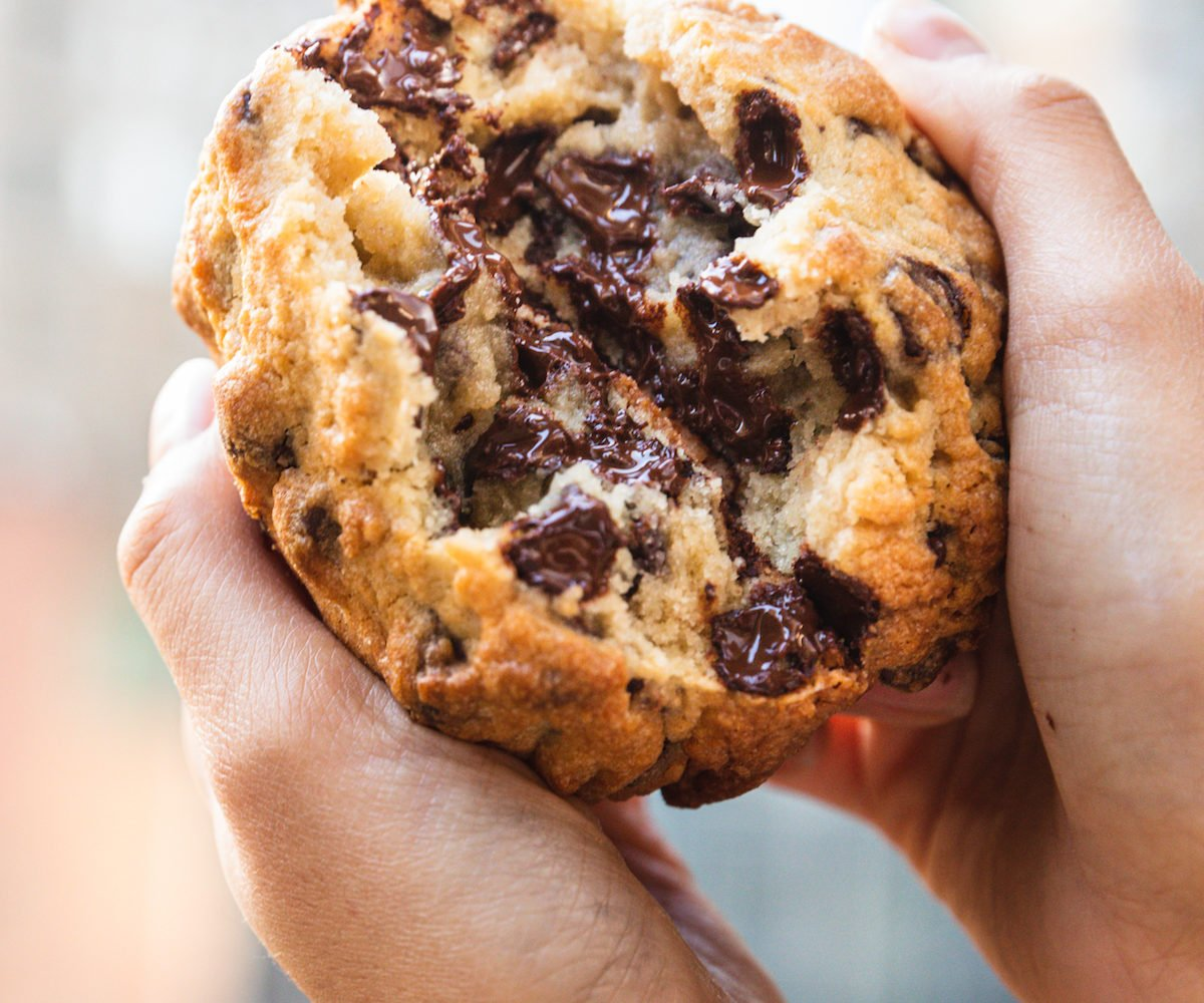 A chocolate chip cookie from Levain Bakery. Photograph by Kate Previte