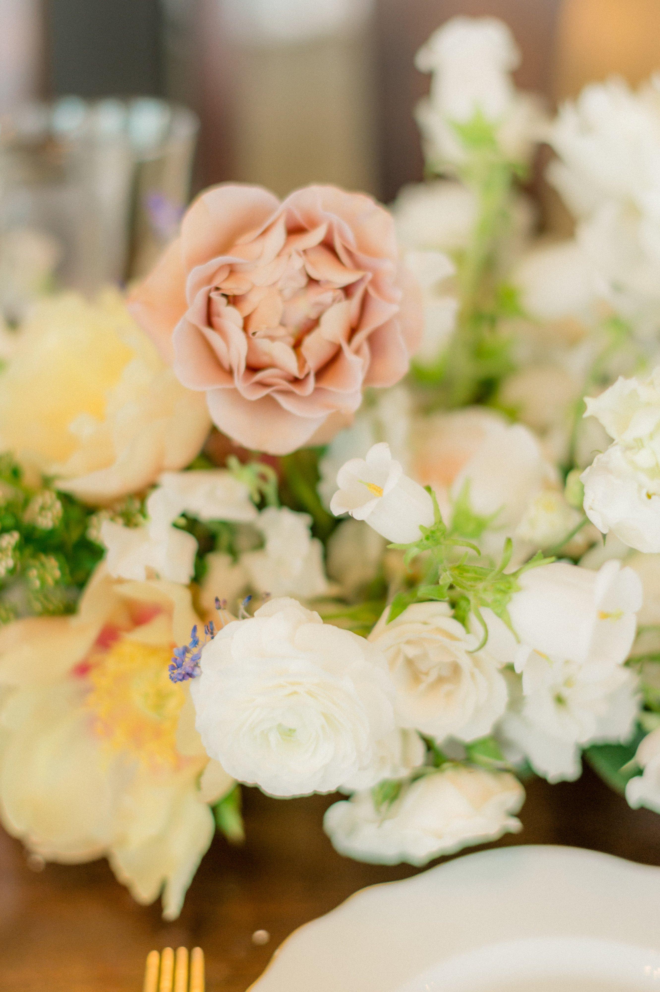 Connor-Alli-Wedding-photo-121