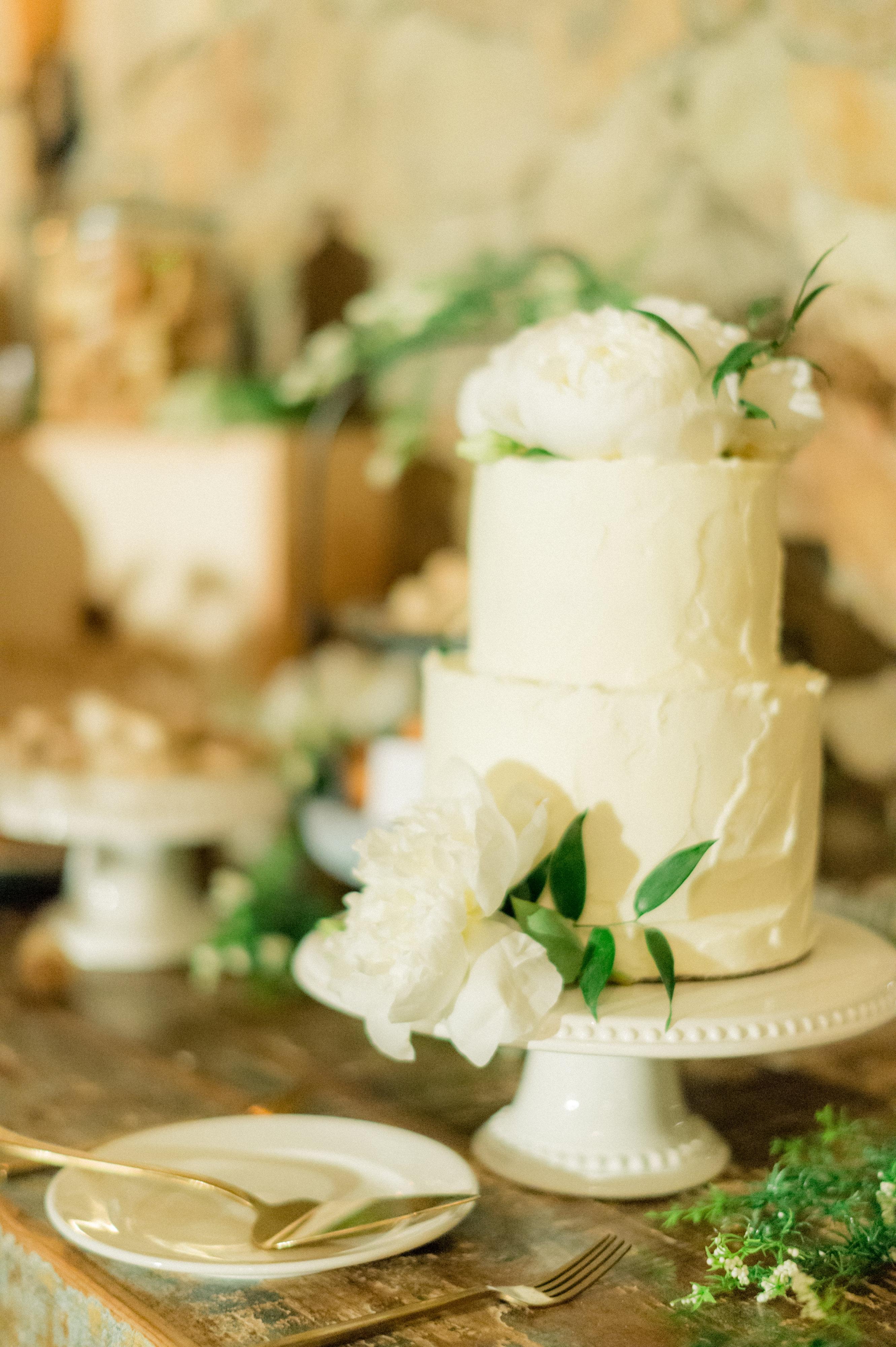 Connor-Alli-Wedding-photo-144