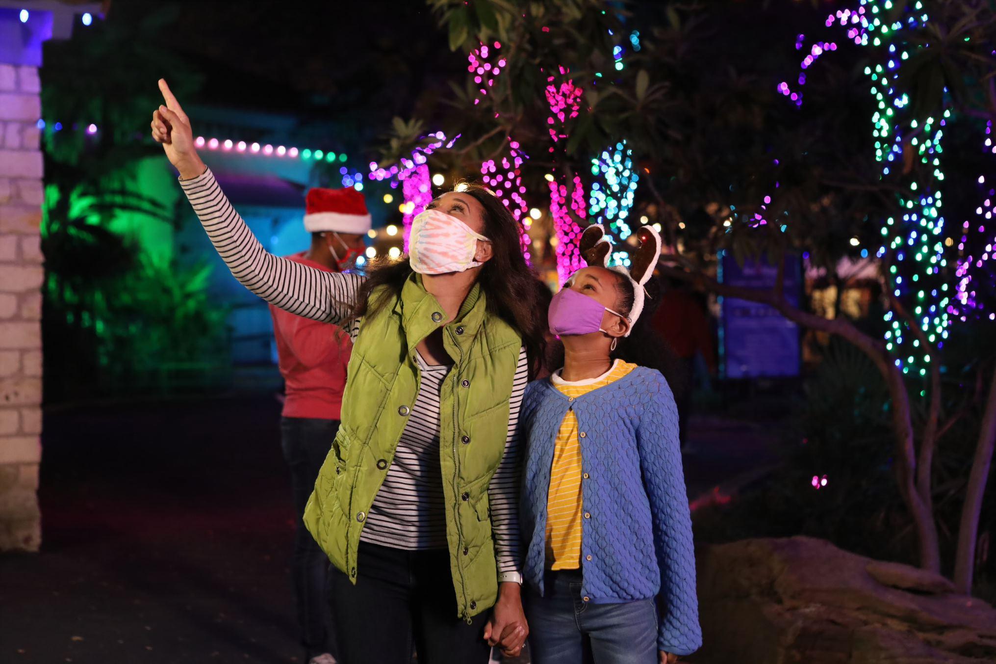 Where Can I Drive To See Neighborhood Christmas Lights Near Puyallup Washington 2021 Where To See Festive Holiday Light Displays Around Washington
