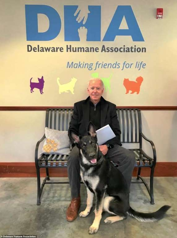 Photo of Joe Biden and Major via the the Delaware Humane Association on Facebook