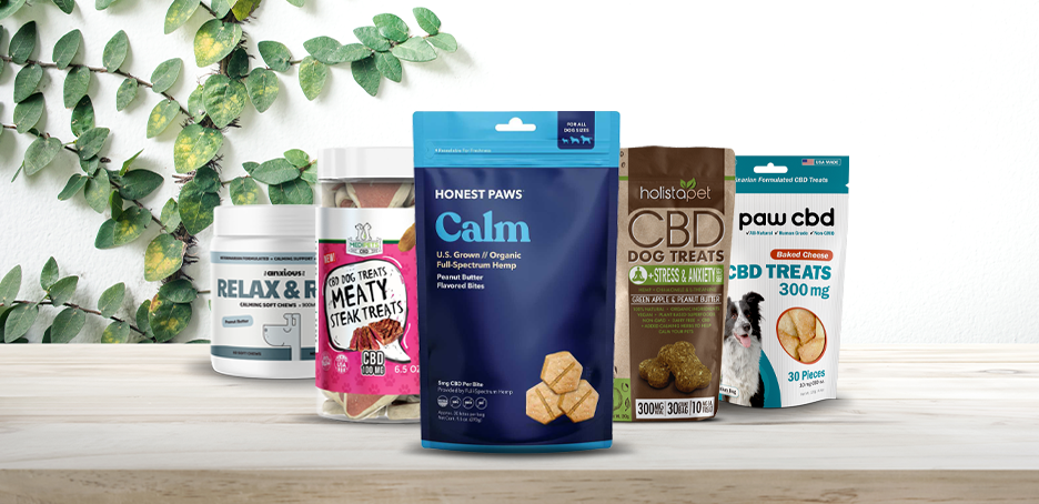 Best CBD Dog Treats - Top Brands of 2021 | Washingtonian (DC)