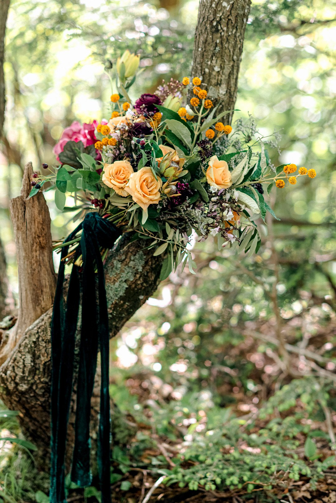 Boho Mountain Elopement in Shenandoah National Park_1001 Angles Photography_Shenandoah National Park Adventure Elopement-2_low