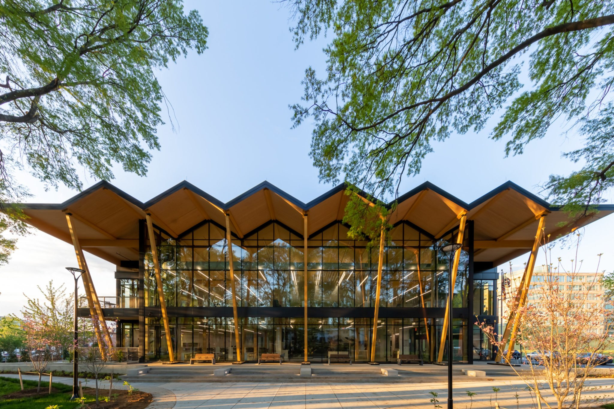First Look: DC's Newest Library Is a Stunner