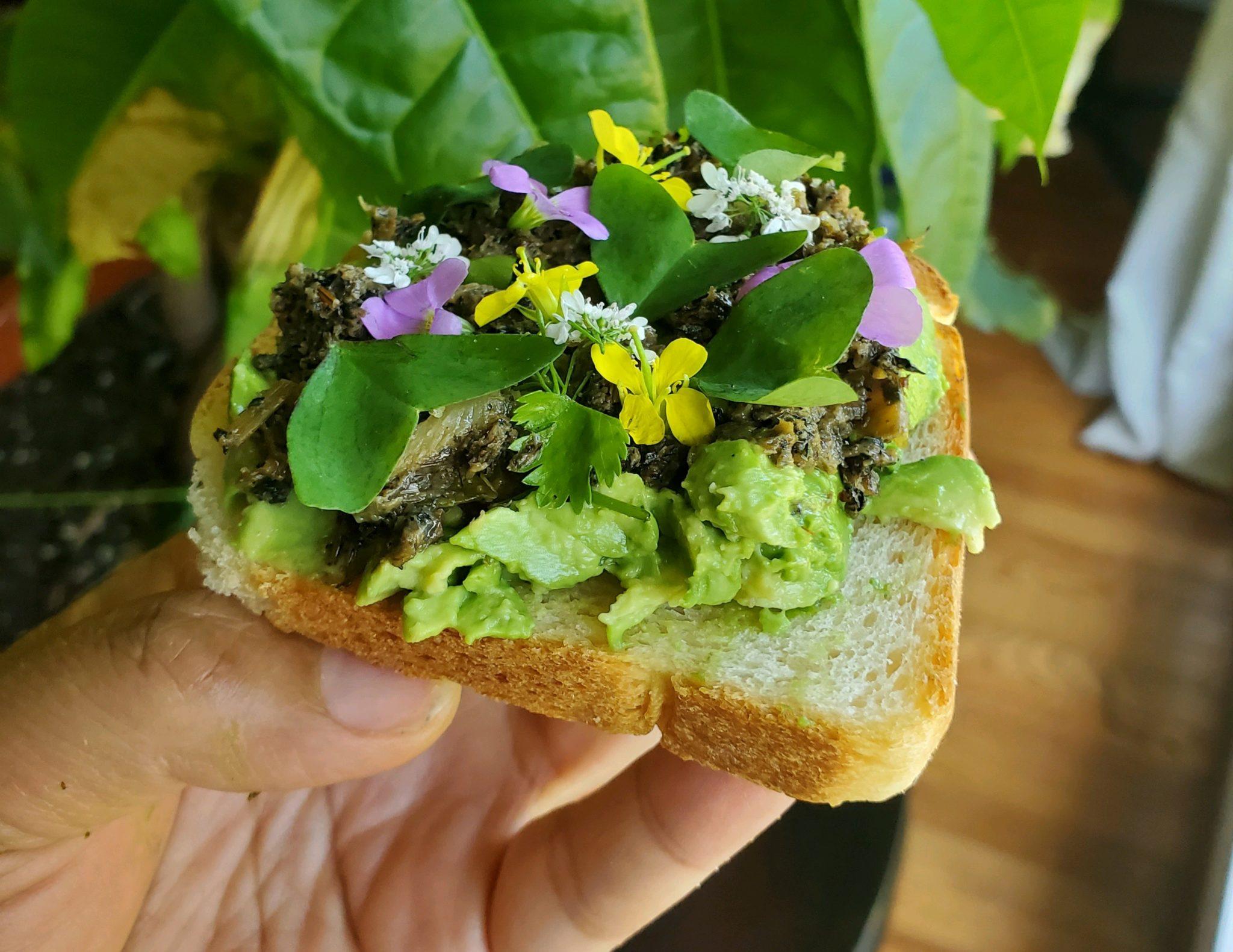 Avocado toast. Photo by Seng Luangrath.